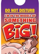 Do not disturb!  I'm in the middle of something big!